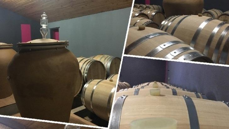 chateau-tour-castillon-travaille-sur-assemblage-de-5-cepages-medocains-merlot-cabernet-sauvignon-cabernet-franc-petit-verdot-et-carmenere