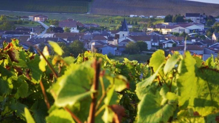 champagne-charles-clement-a-colombe-sec-niche-dans-un-village-preserve