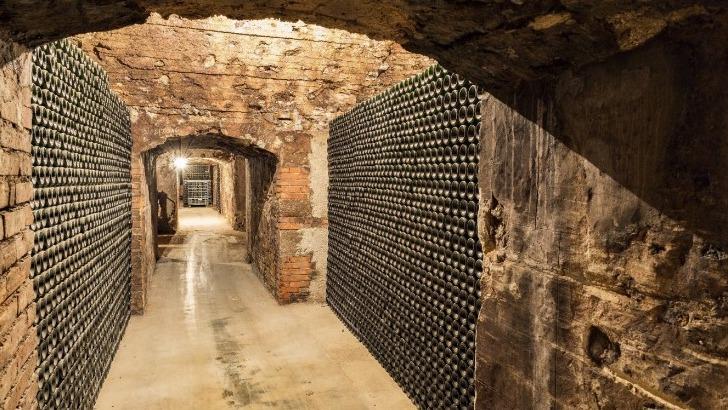 champagne-charles-ellner-a-epernay-pres-de-3-000-000-bouteilles-sont-stockees
