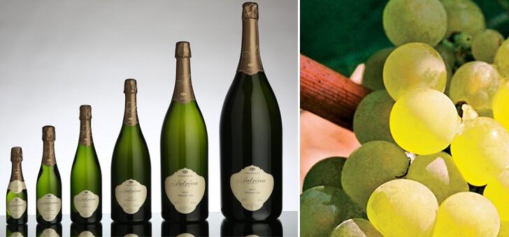 des-champagnes-d-exception-pour-tous-vos-instants