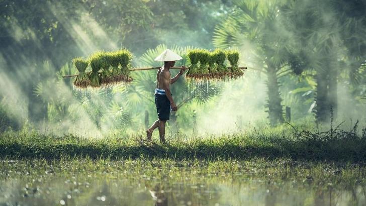 grandir-aventure-a-decouverte-du-cambodge