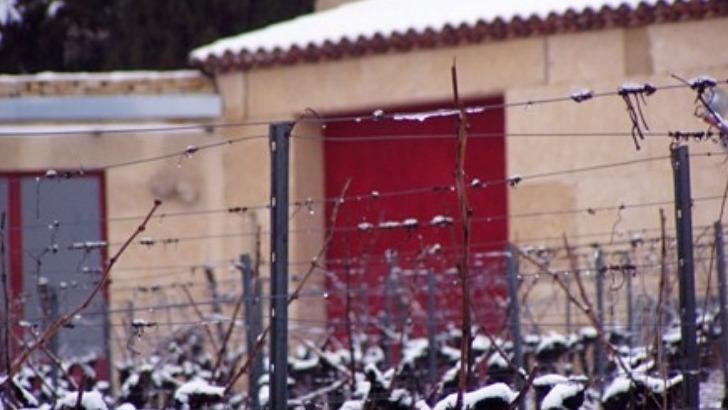 clos-roque-a-saint-ambroix-une-entreprise-familiale-prospere-autour-de-vins-atypiques