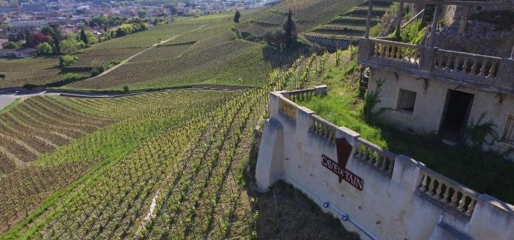 cave-de-tain-hermitage-a-tain-hermitage-cedex-fleuron-de-cooperation-viticole-de-sa-region