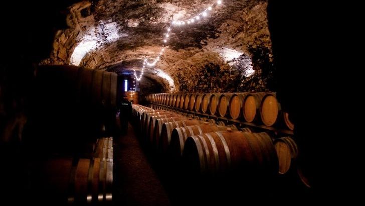 vins-alcools-domaine-famille-fabre-a-luc-sur-orbieu