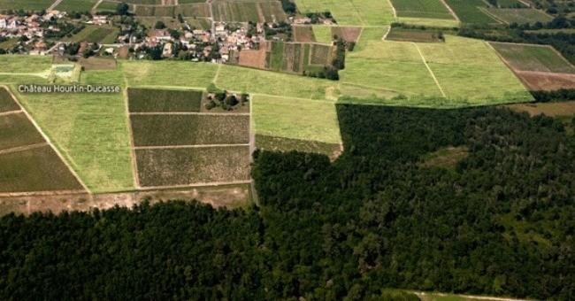 chateau-hourtin-ducasse-a-pauillac