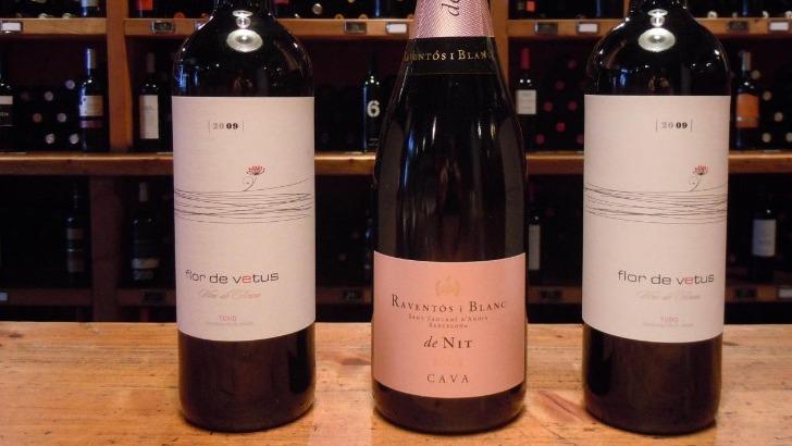 soleil-rouge-a-geneve-celebre-diversite-des-vins-espagnols-a-travers-vins-rouge-blancs-rose-et-du-cava-joliment-ranges-dans-caves