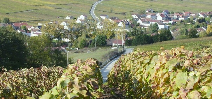 image-prop-contact-champagne-domaine-b-girardin