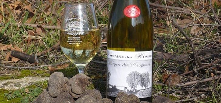 presentation-du-vin-blanc