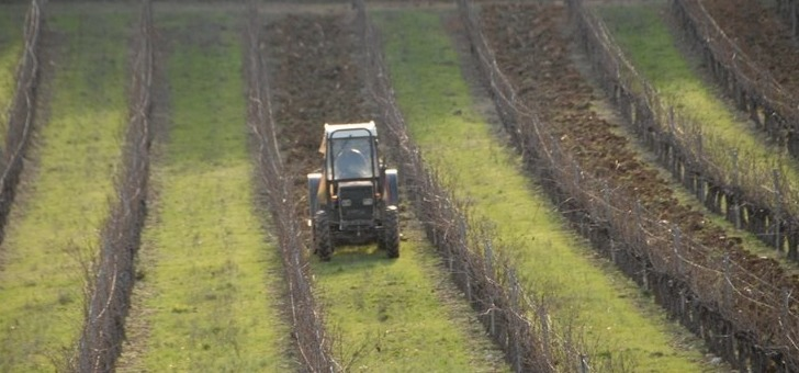 preparation-du-terrain-de-vignoble