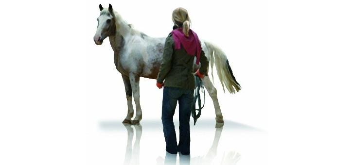 horse-concept-des-formations-pertinentes-et-probantes-a-destination-des-cadres-d-entreprise