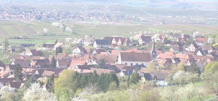 wangen-petit-village-medieval-viticole-d-alsace