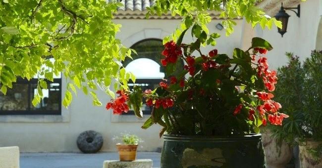 chateau-virant-a-lancon-provence