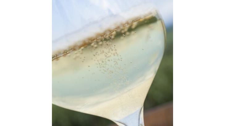 champagne-brisson-lahaye-bulles-petillantes-titillent-vos-papilles
