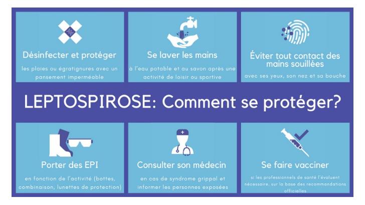 b2520b96df6 Santé au travail et prévention des risques professionnels en France