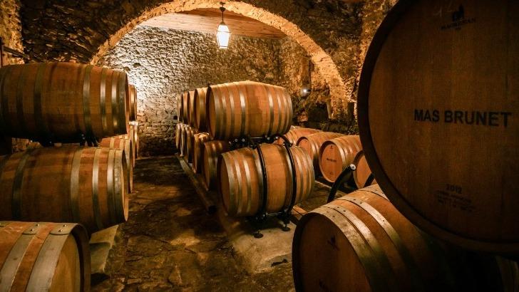 domaine-de-brunet-des-vins-a-qualite-reconnue-et-recompensee