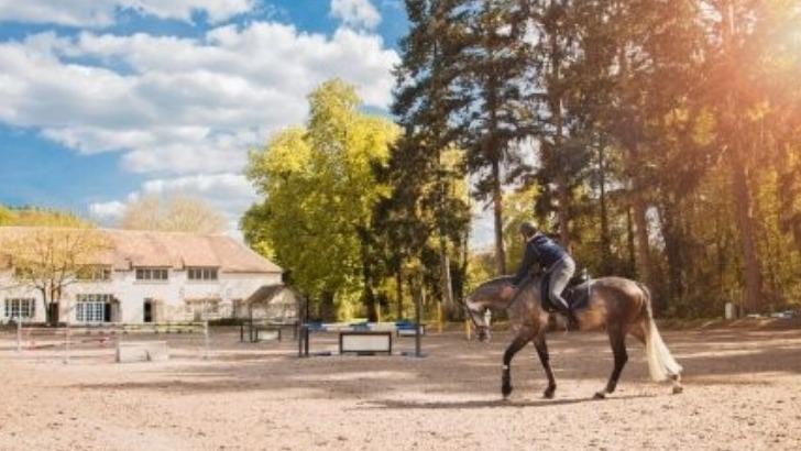 equimov-solution-innovante-pour-passionnes-du-cheval