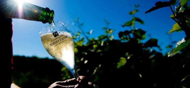 une-selection-de-champagnes-de-grande-qualite