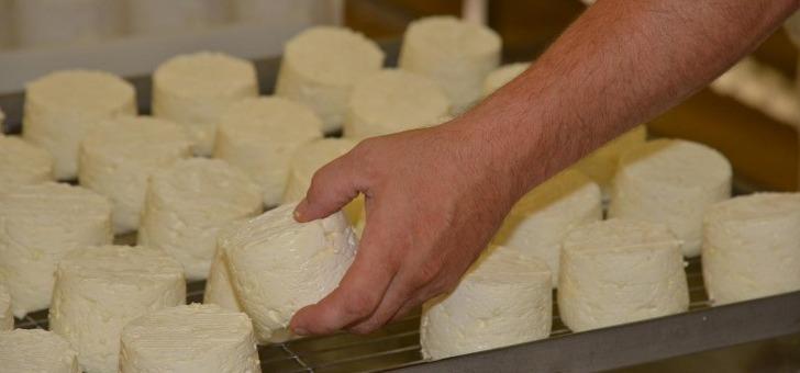 fromage-de-langres