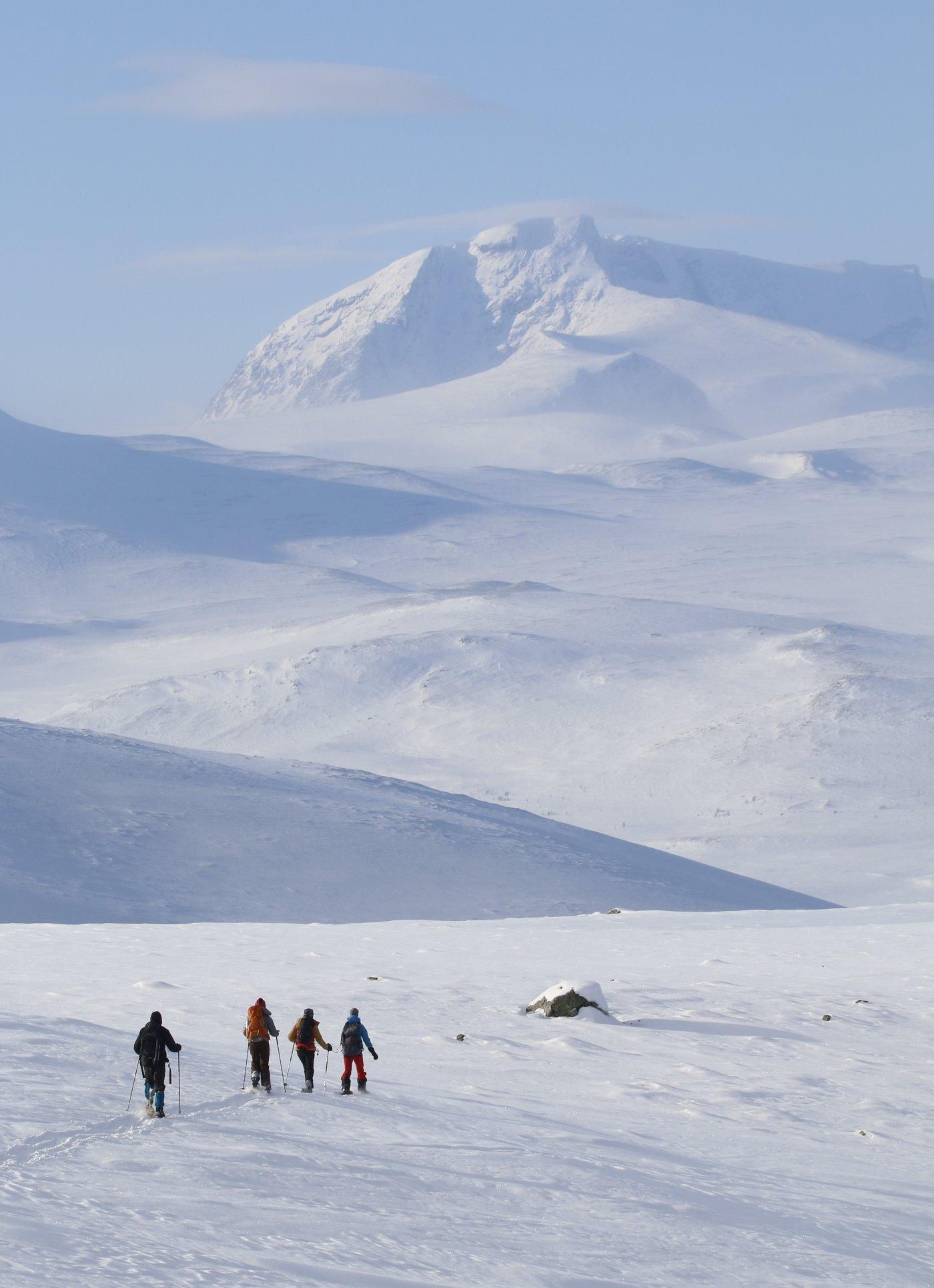 ski-au-coeur-des-plus-belle-zones-nordiques