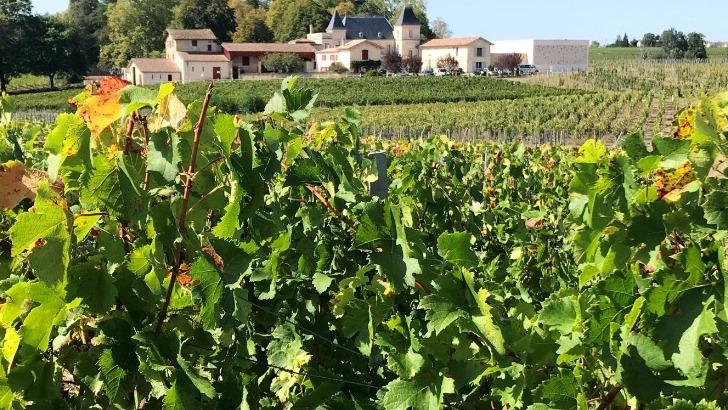 vins-alcools-domaine-chateau-moncets-chateau-de-chambrun-a-neac