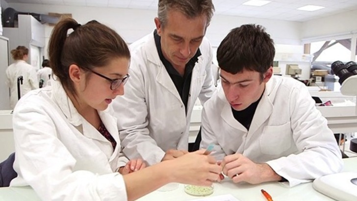 sps-gsr-des-programmes-de-formations-sciences-du-vegetal