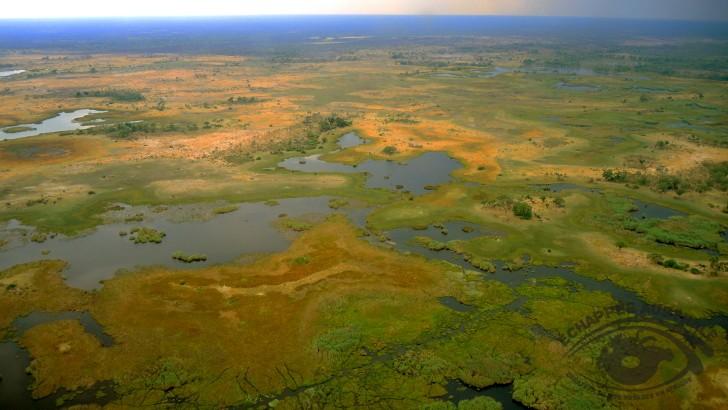 un-survol-du-delta-de-okavango-au-botswana-plus-beaux-safaris-au-botswana