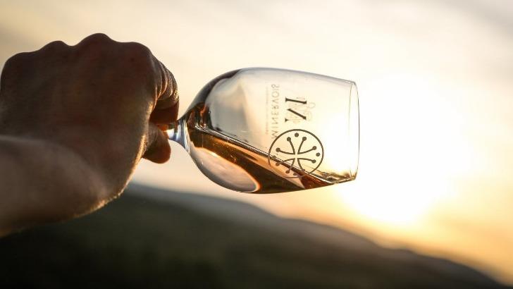 des-vins-equilibres-font-honneur-a-region