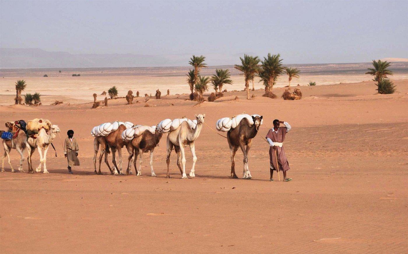 detours-mauritanie-caravane-majabat