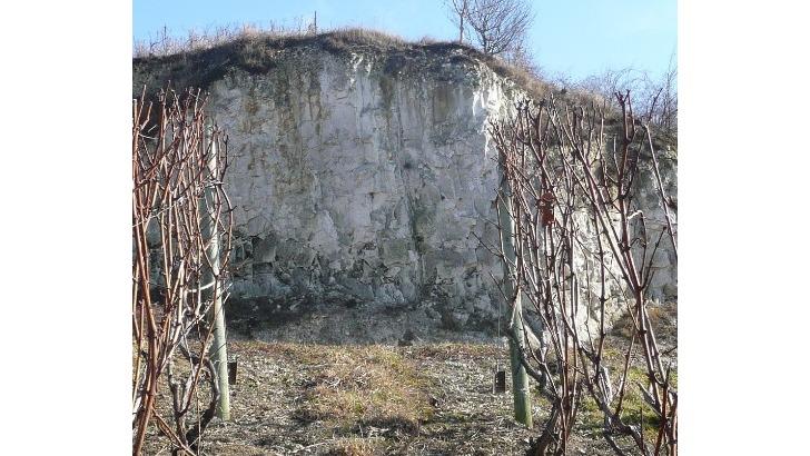 champagne-andre-brochot-falaise-geologie-de-notre-vignoble