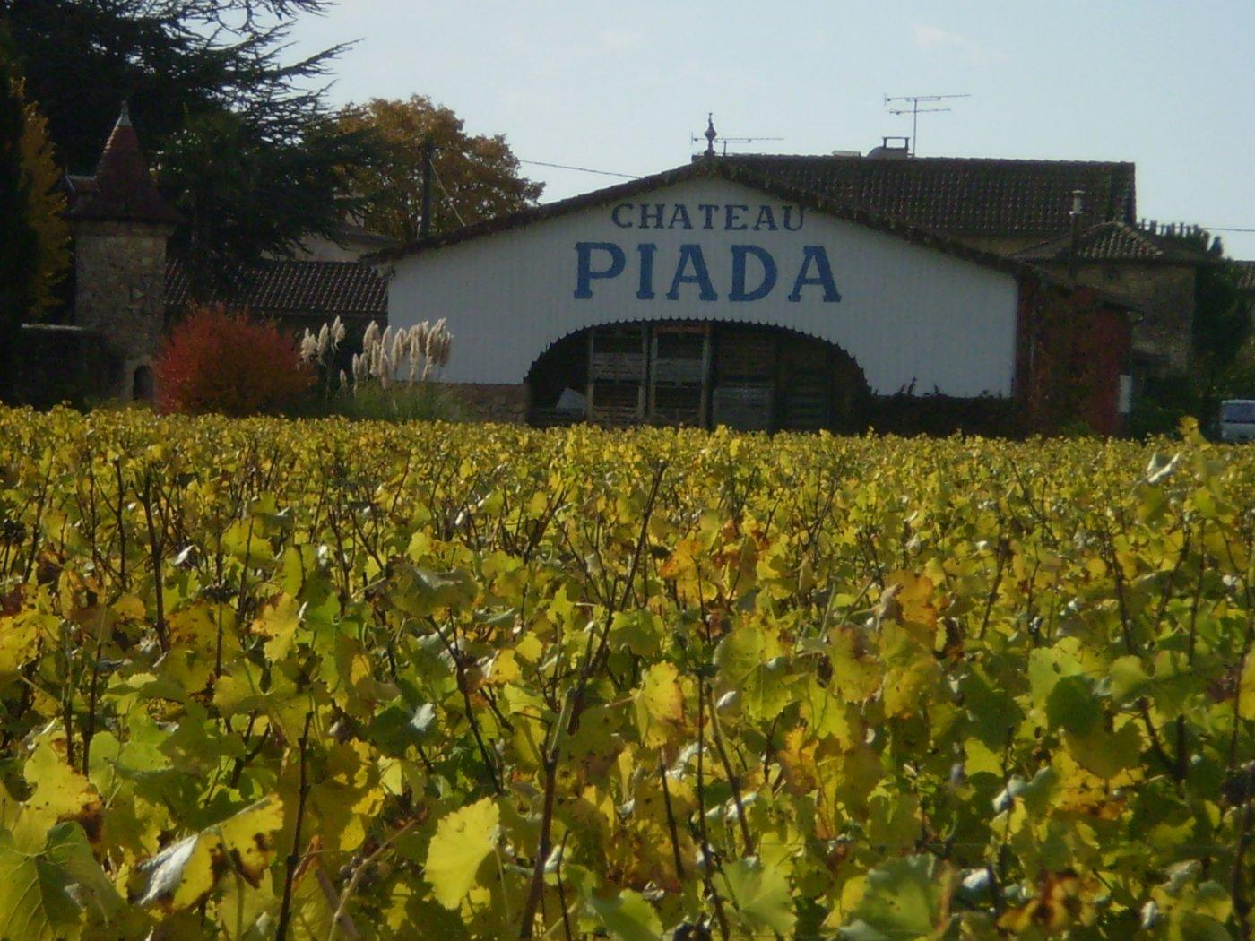 chateau-piada-un-domaine-travaille-appellation-cerons-graves-et-sauternes
