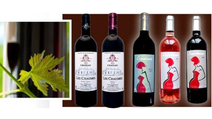 chateau-chaumes-des-vins-rouges-et-roses-a-personnalite-bien-affirmee