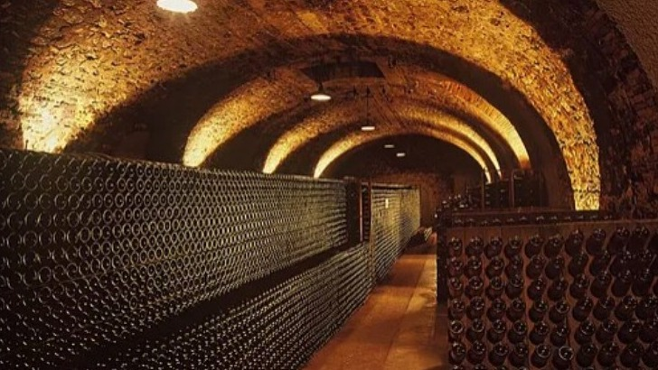 champagne-napoleon-a-vertus-grandes-cuvees-cave-voutee