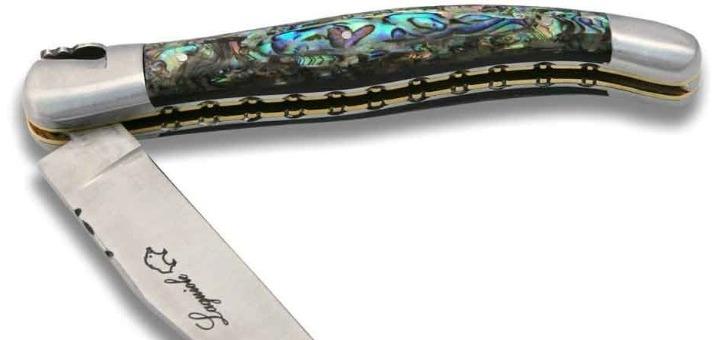 abalone-est-nom-anglais-plus-connu-sous-nom-d-ormeau-sur-nos-cotes-d-un-coquillage-face-interne-est-nacree-irisee-aux-superbes-teintes-bleu-rose-et-verte