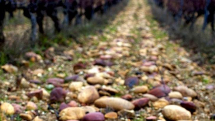 vins-alcools-domaine-domaine-des-maravilhas-a-saint-laurent-des-arbres