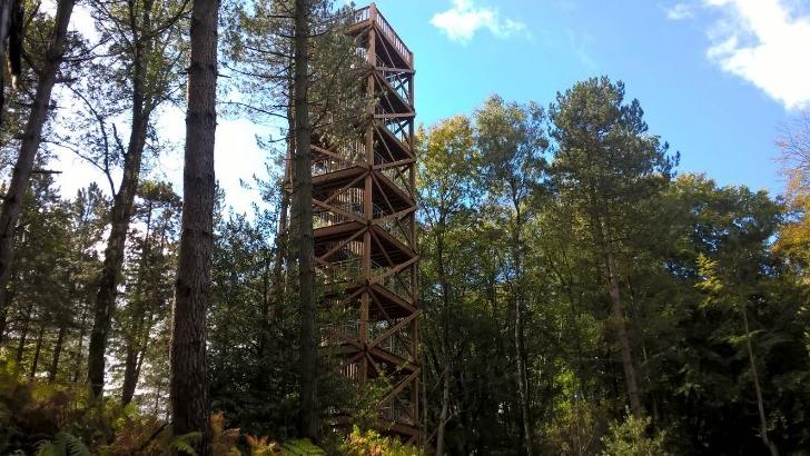 tour-d-observation-du-general-mangin-reconstruite-2017