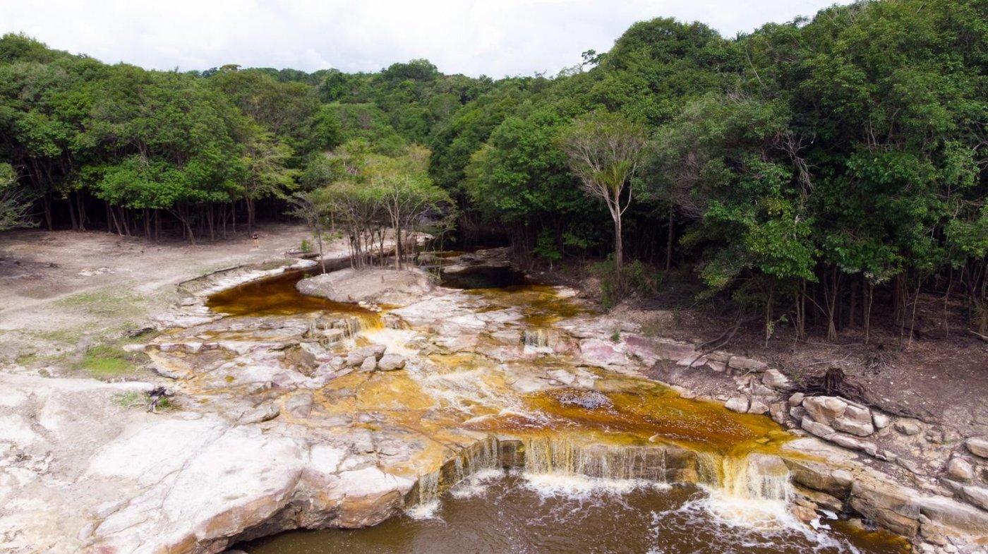 heliconia-amazonia-un-voyage-decouverte-ponctue-de-diverses-activites-comme-une-baignade-avec-des-dauphins-rose-une-randonnee-foret