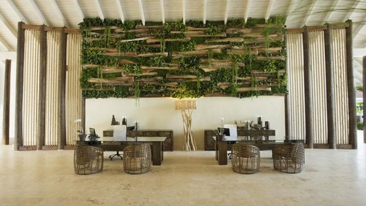 entre-design-et-raffinement-un-decor-de-reve-a-hotel-viva-wyndham-v-samana
