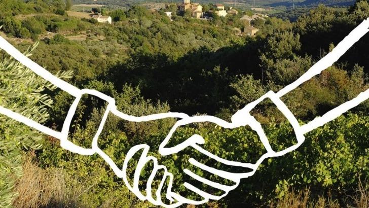 gamme-de-vins-de-fonjoya-est-tiree-de-occitan