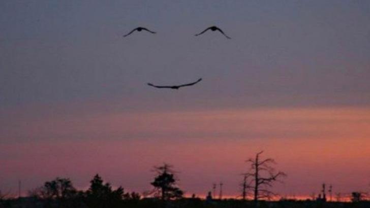 voir-magie-du-sourire-de-vie-dans-notre-vie-voir-vie-sourire