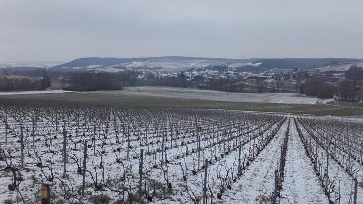champagnes-yoan-tapprest-domaine-par-temps-d-hiver